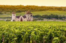 Sehenswuerdigkeiten-im-Burgund-das-darf-man-nicht-verpassen